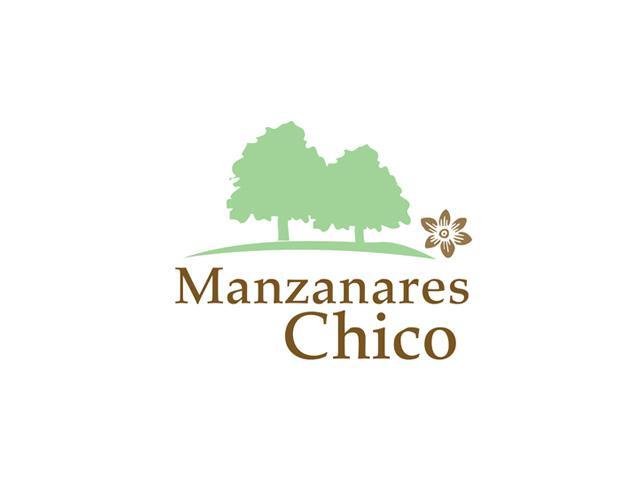 Manzanares Chico